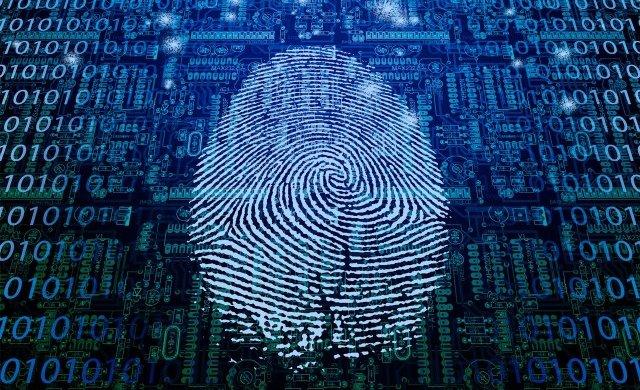 Security Finger Print, Greenville, South Carolina